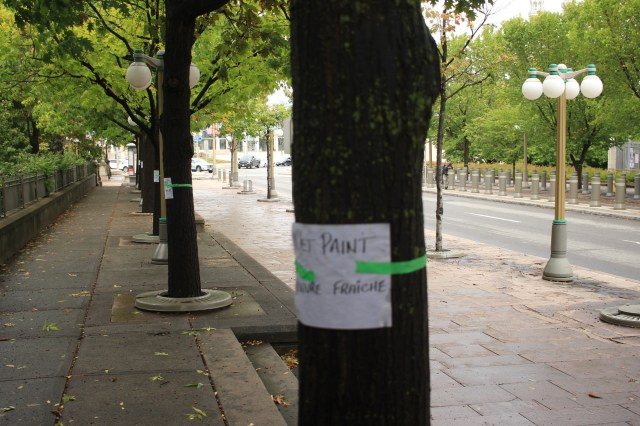 """""""Wet Paint"""" signs on the trees"""