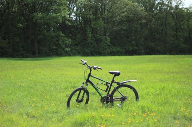 My bike in a meadow