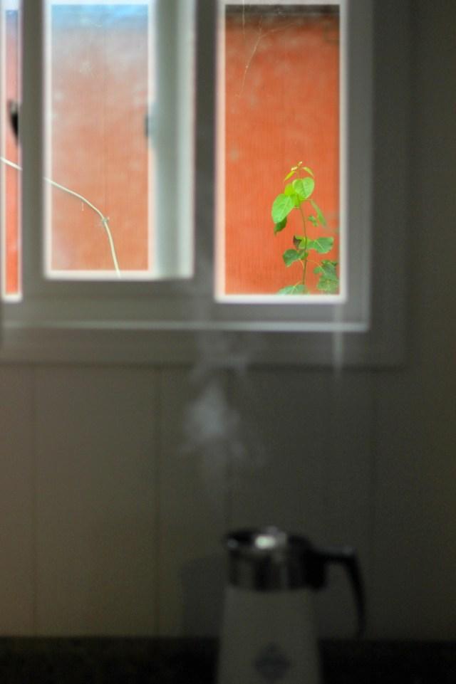 Coffee perking under a window
