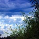 A cloudy sky