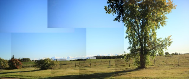 A panorama of the yard at the farm, with a tree on the right side