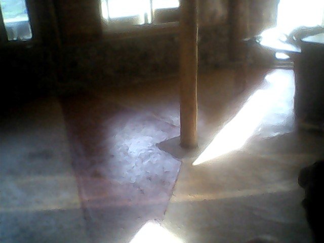 Stained concrete sun rays