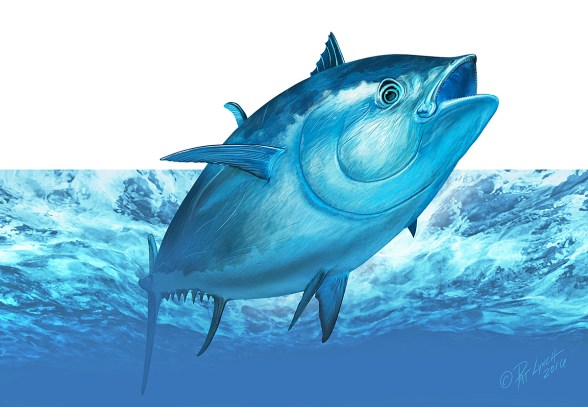 Bluefin Tuna. Photoshop. ©Patrick J. Lynch, 2017. All rights reserved.