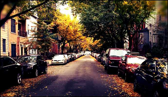 autumn-brooklyn