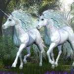 Amazing Unicorn Pictures!