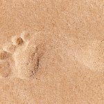 Word was made flesh showing the footprint of a man