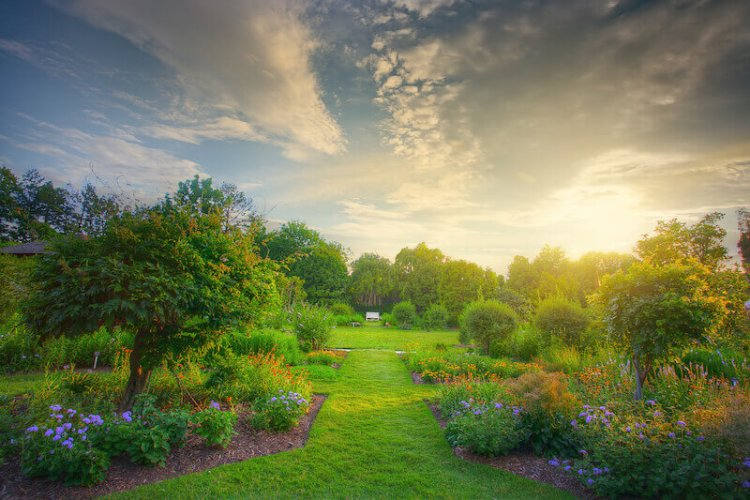 Desolate land turned into a garden showing the image of a beautiful garden
