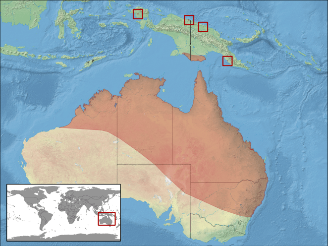 Litoria_caerulea_distribution
