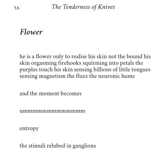 Extract from Flower by Patrick Stack