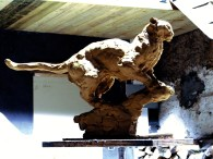 Panther 53x33cm 1/8 ©2007