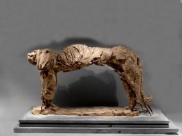 Panther 58x36cm 1/8 ©2009
