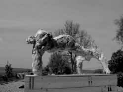 Tigre Royale 180x95cm ©2011