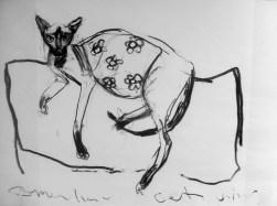 Domestic cat - charcoal on paper 105x150cm ©2013