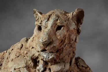 Leopard Male 60x60cm 1/8 ©2016