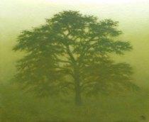 TSpierenburg Cèdre, crépuscule Oil on canvas 43x54cm