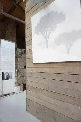 Exposition Tobias Spierenburg