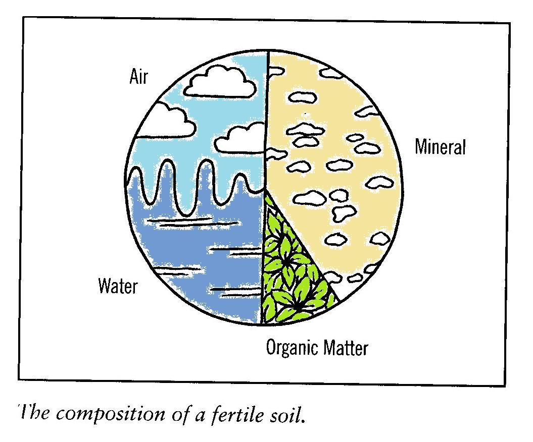 Soil Particle Size Worksheet