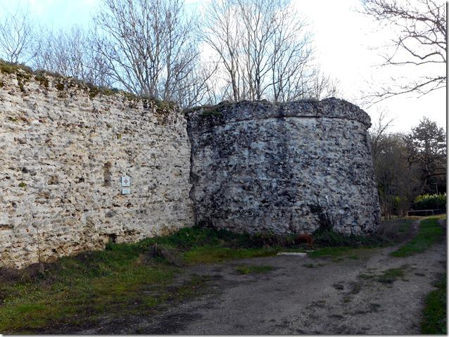 Rempart nord du Castellum gallo-romain de Larçay