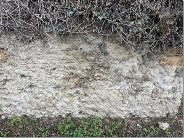 La craie à rognons de silex des environs du bourg de Nouzilly