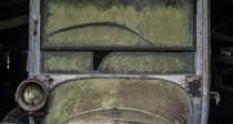 Sortie de grange pour la collection Baillon