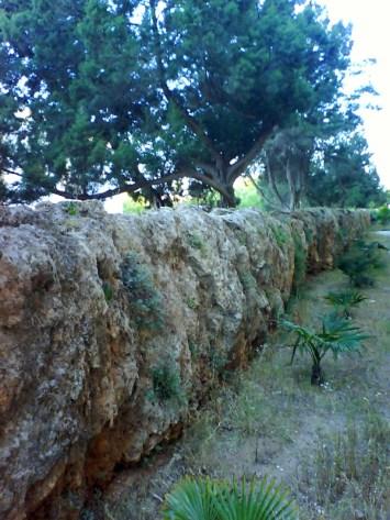 Aqüeducte de s'Argamassa dsc02703-800