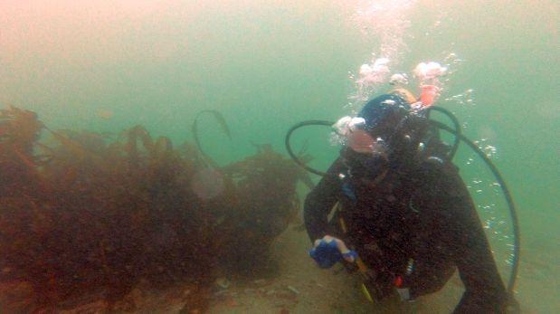 Expertos darán conferencia sobre arqueología subacuática, PERÚ