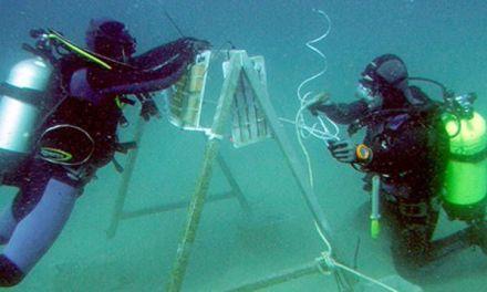 Investigadores de la UCA localizan los restos del navío francés 'Fougueux', hundido tras la batalla de Trafalgar