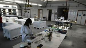 Instalaciones del Centro de Arqueología Subacuática - F.JIMÉNEZ