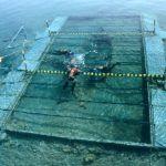 La prospección del barco fenicio del siglo VII a.C. hallado sumergido en Mazarrón se realizará el próximo año