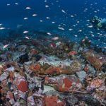 Comienzan las prospecciones subacuáticas para catalogar los pecios hundidos en aguas del Parque Nacional de Cabrera