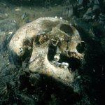 Investigan el pecio del Salvador, que naufragó en 1812 en Uruguay y conserva los restos de 400 soldados