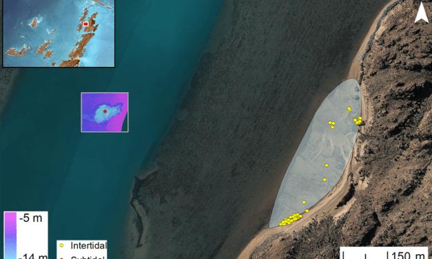 Australia descubre sus primeros yacimientos subacuáticos