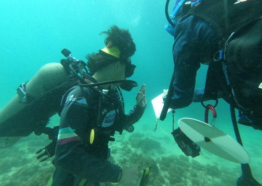 La juventud limonense explora sus tesoros submarinos
