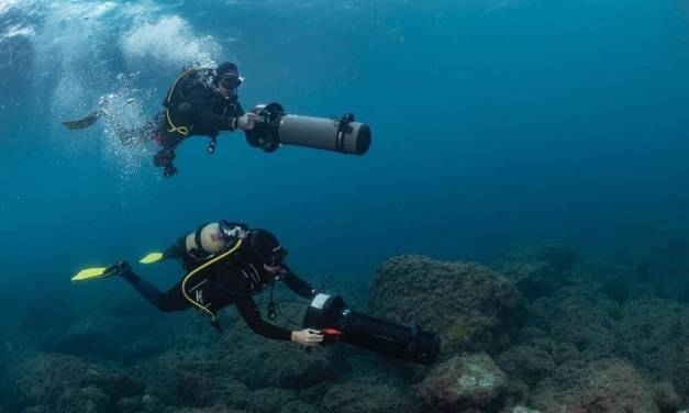 Nuevos hallazgos en la Isla del Fraile de Águilas lo revelan como un yacimiento «único» en el Mediterráneo