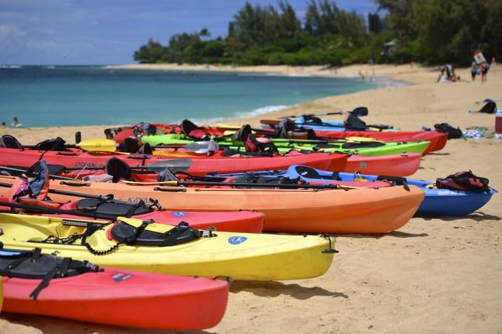 Various kind of kayaks on the beach