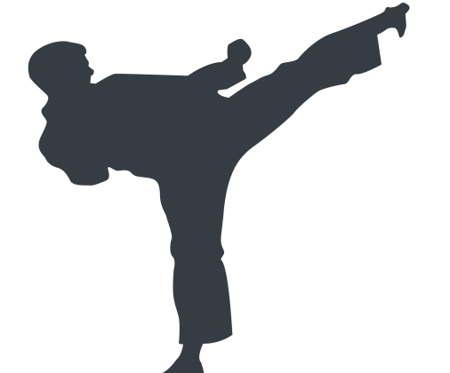 Martial Arts Kick Sillouette