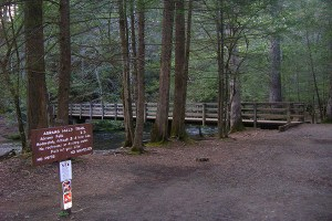 Trailhead at Abrams Falls
