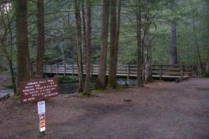Trailhead at Abrams Falls