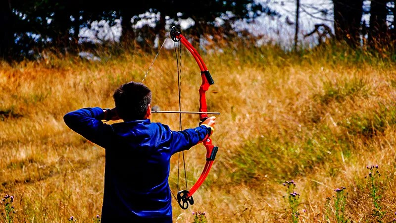 Cost Of Restringing A Compound Bow