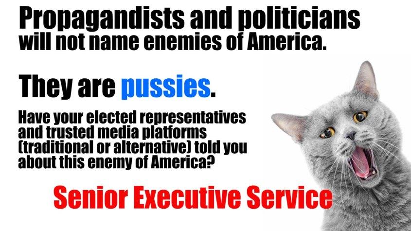 Senior executive service pussy