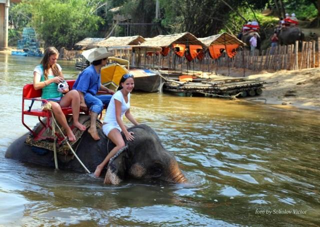Катание по Квай на слонах