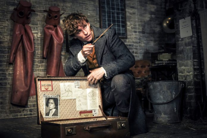 REVIEW: LATEST 'FANTASTIC BEASTS' IS A MIXED BAG OF WONDERS