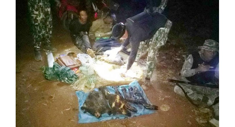 Alleged poachers with wild boar flesh arrested
