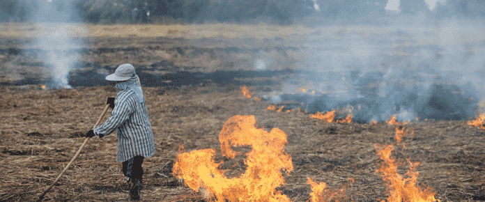 The burning truth in Thailand? There's no excuse for haze