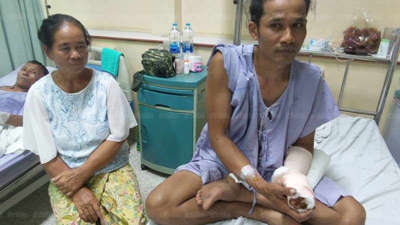 Wild Bear attacked Buriram Villager.