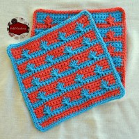 Spike Cluster Washcloths by KatiD Creations