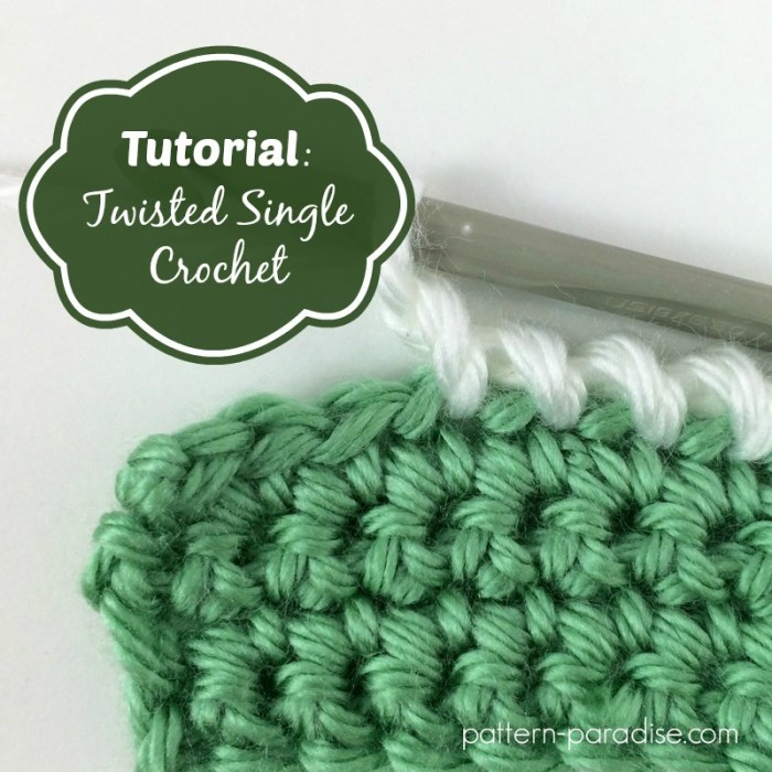 Twisted-SC-Tutorial by pattern paradise