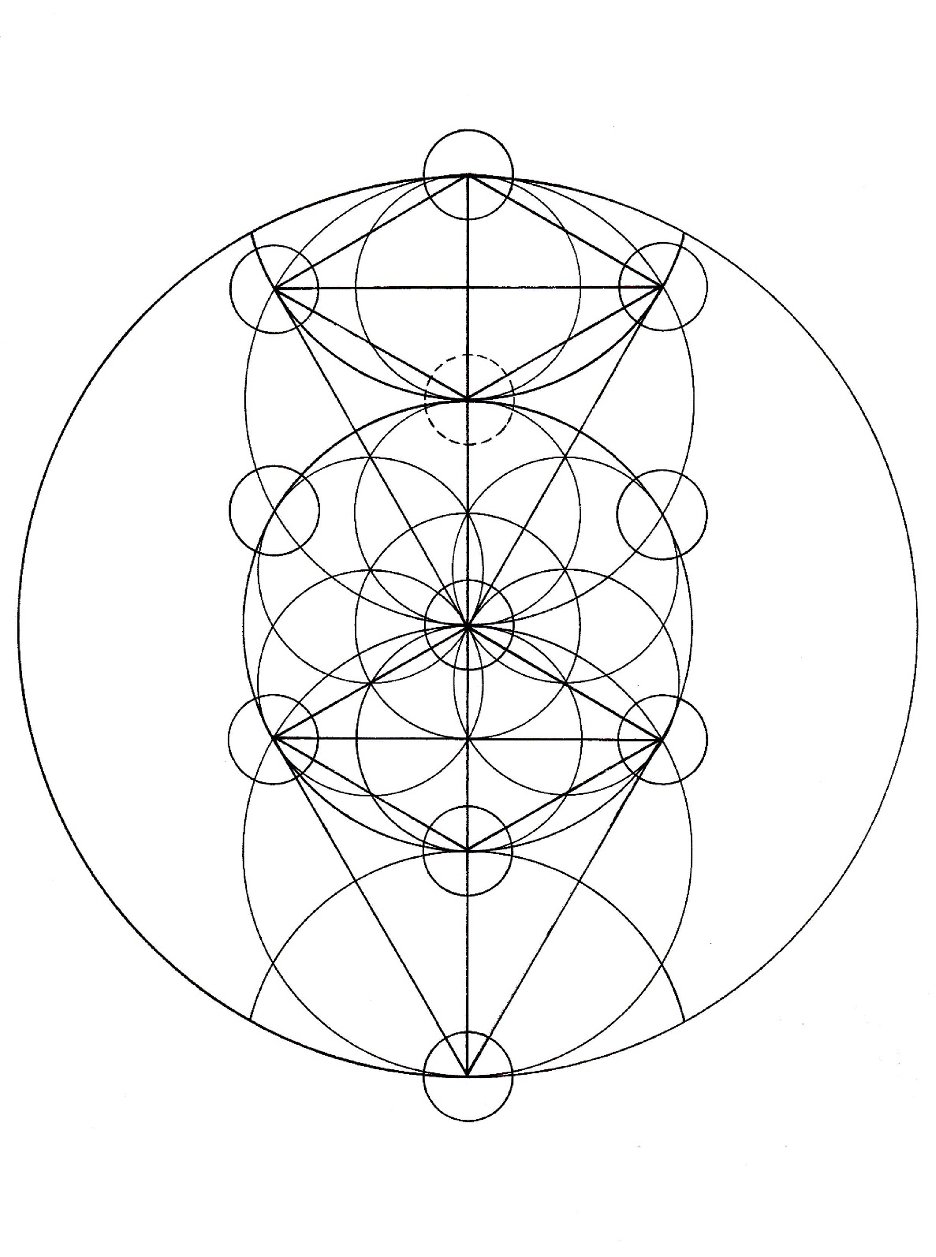Flower Of Life Patterns Of Creation