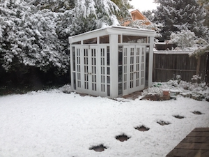 Our chilly greenhouse