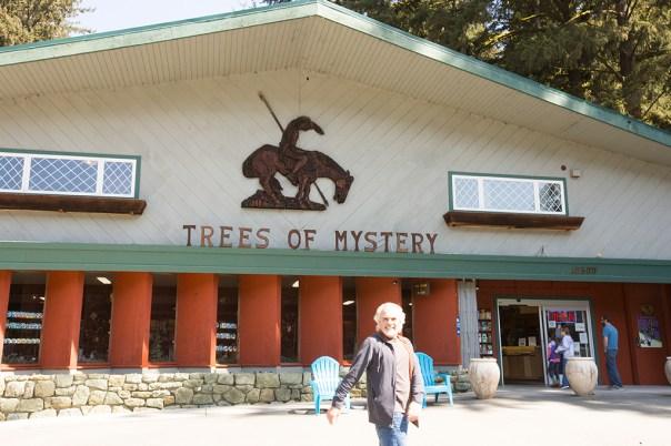 MysteryTreesStore